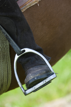 stirrup: Dressage rider and horse closeup boot in stirrup detail, France