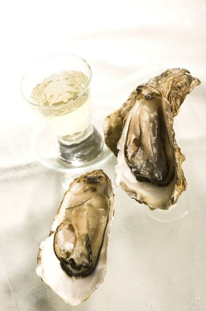 ostracean: Raw oysters with ice on a white background, France Stock Photo