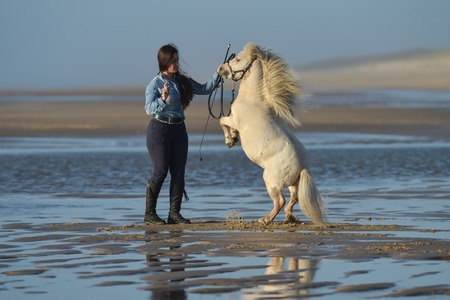 Young lady riding a pony on the beach in early morning, France