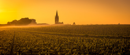 Vineyard and village of Saint-Emilion at sunrise, panoramic, Gironde, France