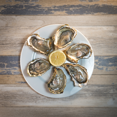 Fresh oysters white plate and lemon on wooden desk, France