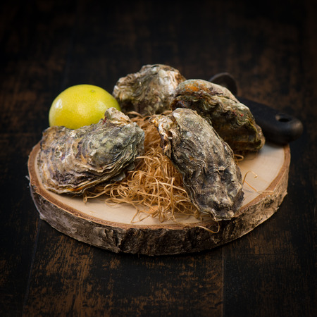 Oysters closed and lemon on grey background seafood, France