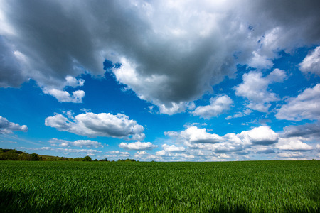 Scenic View Of Wheat Field Against Cloudy Sky , France, Gironde