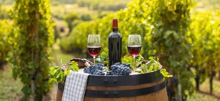 Versare il vino rosso nel bicchiere, barile all'aperto nel vigneto di Bordeaux, Francia