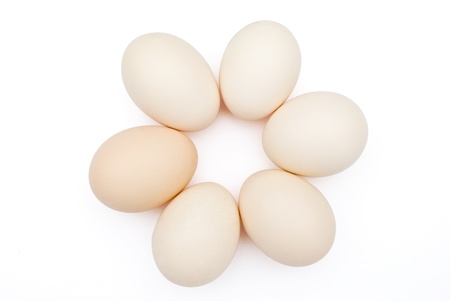 6 eggs lined up in circle