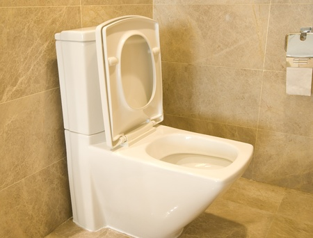 closestool: closestool and tissue in a bathroom
