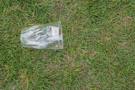 throwaway: Crushed disposable cup on grass Stock Photo