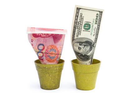 blooming RMB and USD with clipping path