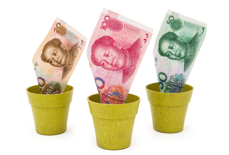 valorization: RMB in flower pots with clipping path, concept of investment