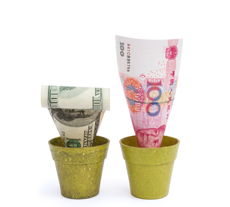 redemption of the world: blooming RMB and fade USD with clipping path