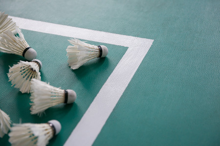 badminton: used shuttlecocks inside the edge of a badminton courts Stock Photo
