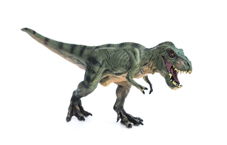 dangerous: tyrannosaurus toy on a white background