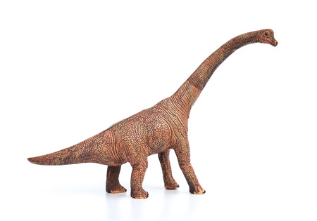 brachiosaurus toy on a white background 写真素材