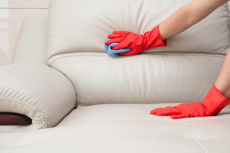 neatness: cleaning leather sofa at home