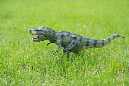 tyrannosaurus toy stands on glass