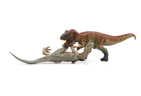 tyrannosaurus: tyrannosaurus stands and allosaurus lays on white Stock Photo