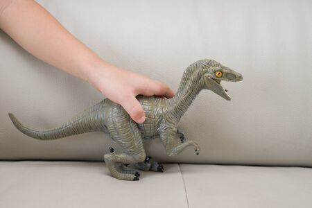 hunter playful: kids hand catching a greu Deinonychus toy on a sofa at home