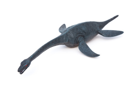 plesiosaurus on a white background