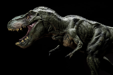 tyrannosaurus toy on a dark background close up Stock Photo