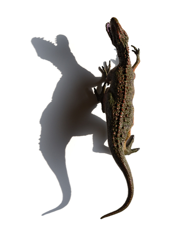 top ivew Carcharodontosaurus toy with shadow on a white background