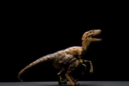 side view yellow velociraptor toy on a dark background
