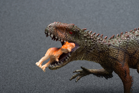 Carcharodontosaurus toy catches a smaller dinosaur close up on a dark background Stock Photo