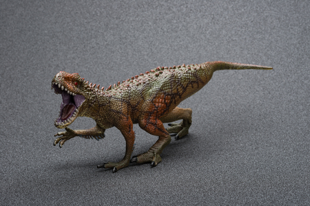 Carcharodontosaurus toy on a dark background Stock Photo
