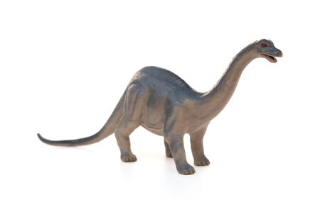 Diplodocus toy on a white background