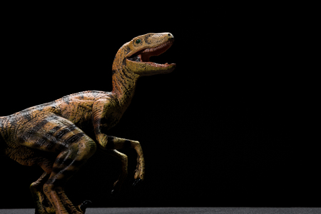 yellow velociraptor toy on a dark background with copy space Stock Photo