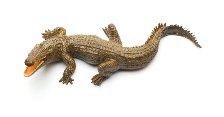 top view aligator toy on a white background