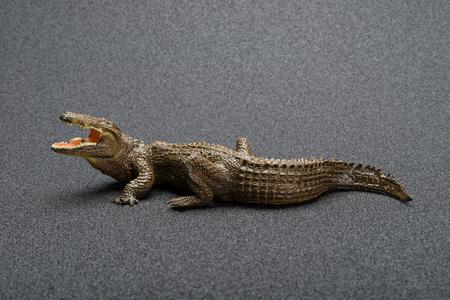 side view alligator toy on a dark background Stock Photo