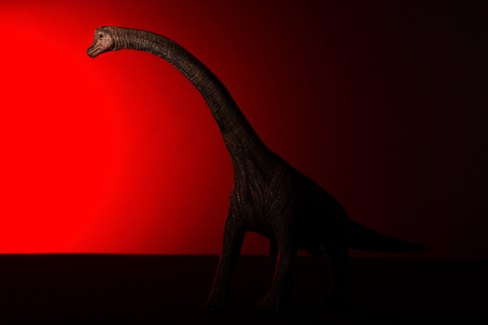 brachiosaurus with spot light on the head and red light on background Stock Photo