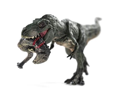 tyrannosaurus biting a dinosaur body with blood on white