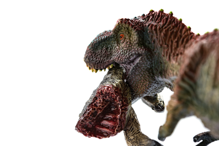 tyrannosaurus biting a dinosaur body with blood on white background close up