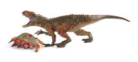 Carcharodontosaurus with a stegosaurus body nearby on white background