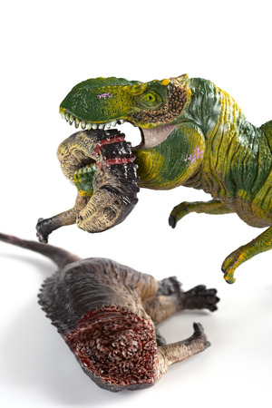 tyrannosaurus biting a dinosaur body on white background vertical composition Stock Photo