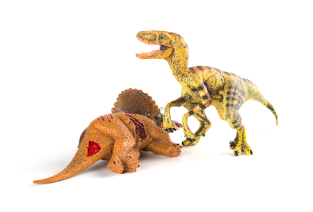 velociraptor with a triceratops body nearby on white background Stock Photo