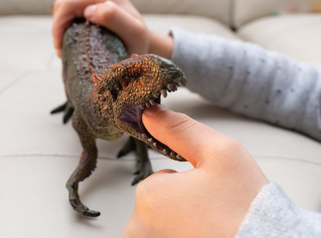 kid playing a Carcharodontosaurus toy and putting his finger inside the mouth