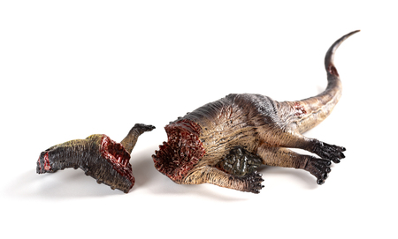 dinosaur dead body on a white background