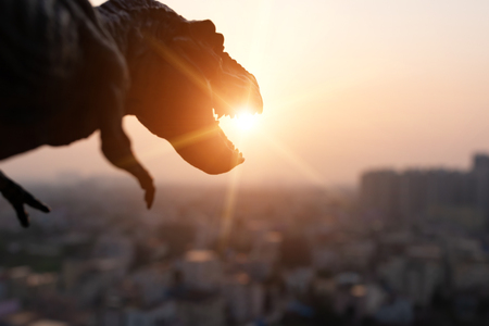 silhouette of tyrannosaurus and buildings in sunset time Stok Fotoğraf