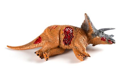 Triceratops dead body on a white background Reklamní fotografie