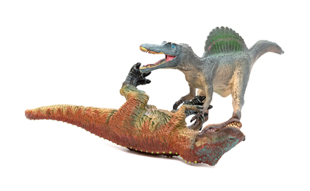 spinosaurus fights with tyrannosaurus  on a white background