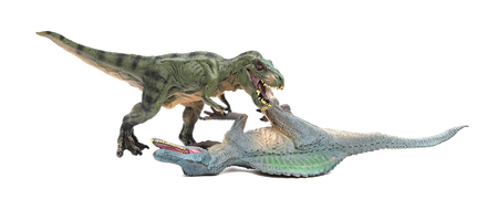 tyrannosaurus fights with spinosaurus on a white background