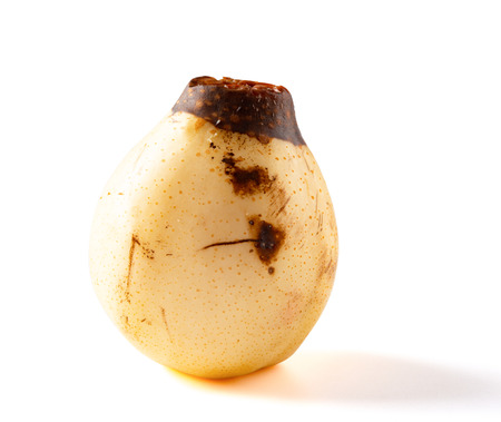 a rotten pear on a white background