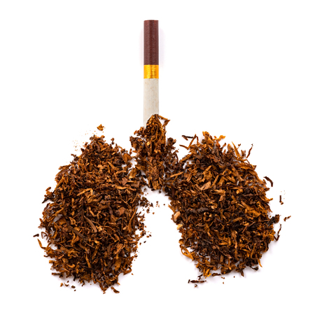 cigarette and tobacco shaped like a human lung concept of unhealthy smoking