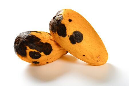 two pieces rotten mangos close up on a white background