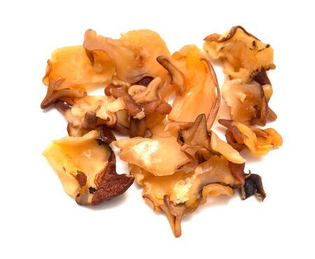 top view dry conch meat on a white background