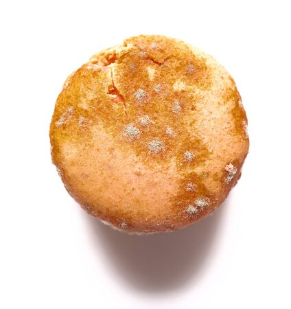 top view yellow moldy macaroon on a white background