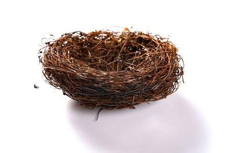a burnt nest on a white background Banco de Imagens