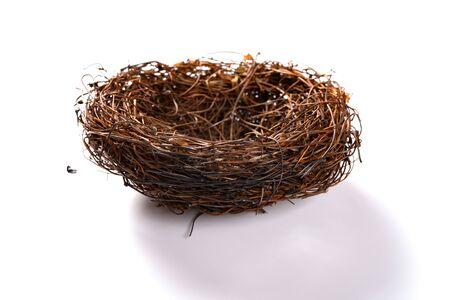 un nid brûlé sur fond blanc